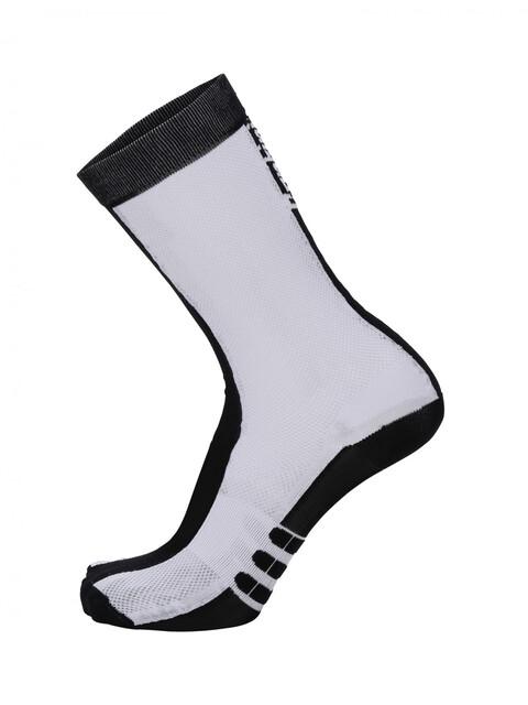 Santini Classe High Socks Men bianco